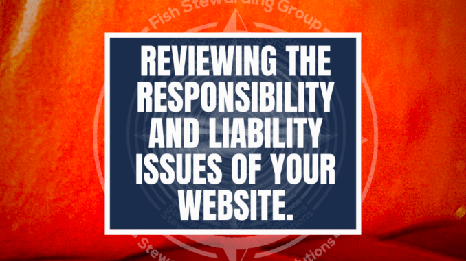 An orange image with the title reading reviewing the responsibility and liability issues of your website.