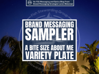 An image of the sky at night with a house and palm trees in the background. In the front the text title that reads brand messaging sampler. A bite size about me variety plate.