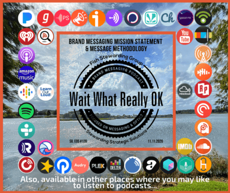 An image with water and sky in the background with social media icons surrounding the wait what really ok logo and text reading brand messaging mission statement.