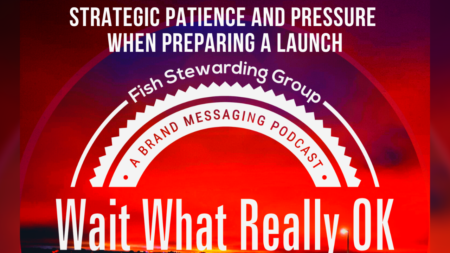 A red graphic that reads: Strategic patience and pressure when preparing a launch. it has the top of the wait what really ok logo and clouds from a sunrise.