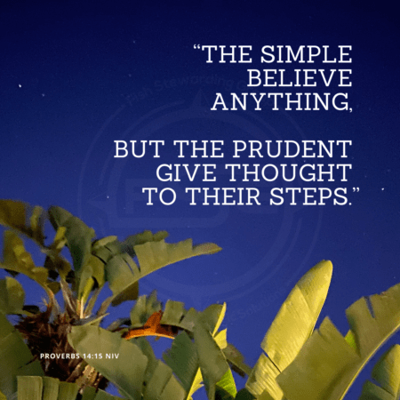 "In center is an FSG logo watermark over a blue night sky and some palm trees in the bottom and a quote in white text that is credited to Proverbs 14:15 NIV in a small font on the bottom and in the upper right center the quote reads, ""The simple believe anything, but the prudent give thought to their steps."" from the Strategic messaging and optics quotes blog."