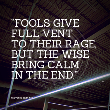 "A quote graphic with a ceiling of a store with some long lights across it. In center is an FSG logo watermark and a quote in white text that is credited to Proverbs 29:11 in a small font on the bottom left and in the upper right center the quote reads ""Fools give full vent to their rage, but the wise bring calm in the end."""